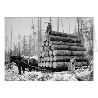 Hauling a Load of Logs, 1908 Card