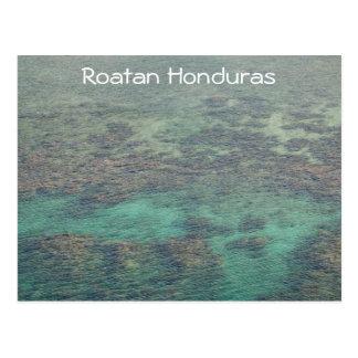 Haunduras Coral Reef Postcard