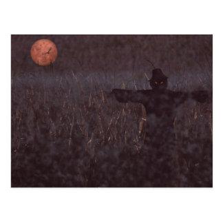 Haunted maize field postcard