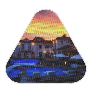 Haut-parleur bleu de Bluetooth Pieladium de Haut-parleur Bluetooth