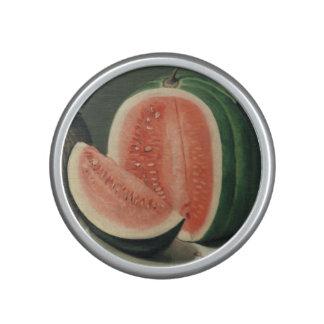 "Haut-parleur de bluetooth d'art de ""melons"""