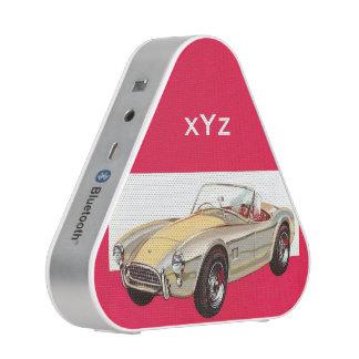 Haut-parleur fait sur commande de Bluetooth de Haut-parleur Bluetooth