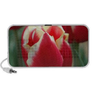 Haut-parleurs de conception de tulipe