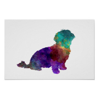 Havanese in watercolor poster