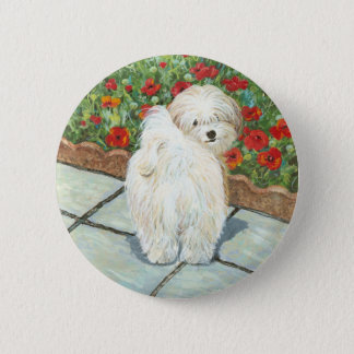 Havanese n Poppies Art Print Gifts & Cards 2 Inch Round Button