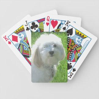 Havanese Poker Deck