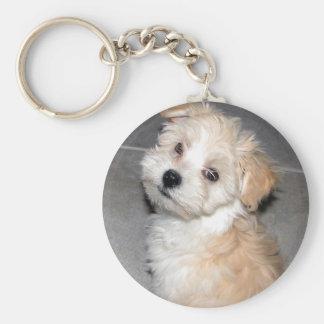 Havanese Puppy Keychain