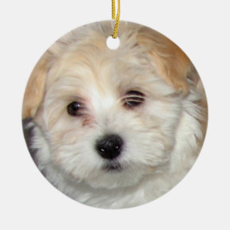 Havanese Puppy Ornament