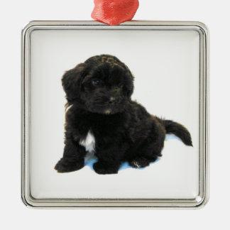 ***Havanese Puppy*** Ornament