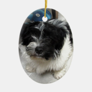 Havanese Rescue Puppy black and white Ceramic Ornament