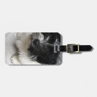 Havanese Rescue Puppy black and white Luggage Tag