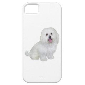 Havanese (white) iPhone 5 cover