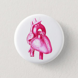 Have a Heart: Pink Cardiology Anatomy Pop Art 1 Inch Round Button