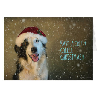 Have a jolly collie Cristmas Card