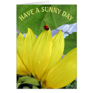 HAVE A SUNNY DAY CARD