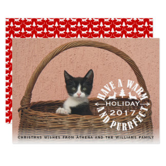 Have a warm and purrfect holiday cat Christmas Card