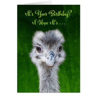 Have an Emusing Birthday - Emu Card