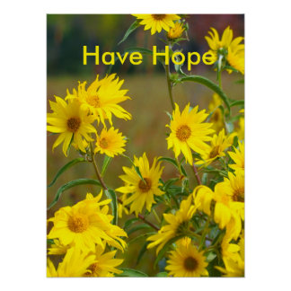 Have Hope Motivational Poster