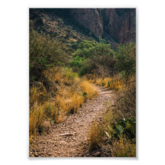 Have the courage to walk your own path photo print