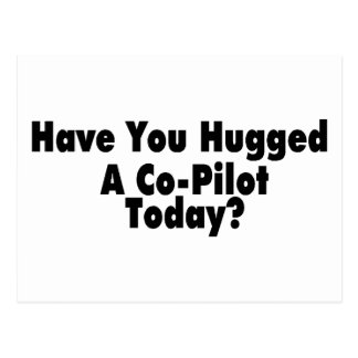 Have You Hugged A Co Pilot Today Postcard