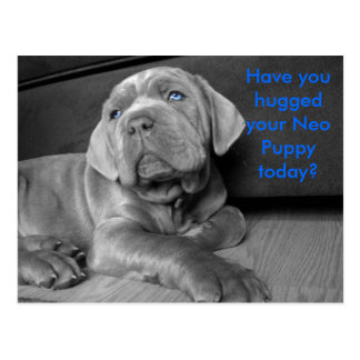 Have you hugged your Neo Puppy today? Postcard