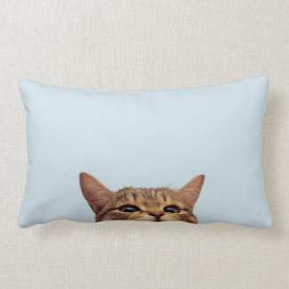 Have you not fallen asleep yet lumbar pillow