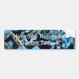 Have You Thanked a Diatom? Bumper Sticker