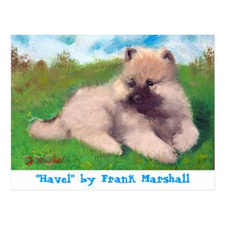 Havel by Frank Marshall Postcard