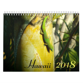 Hawaii 2018 scenic destinations calendar