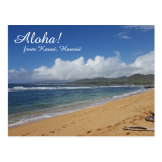 Hawaii Beach Postcard
