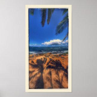 Hawaii Beach Spot Poster