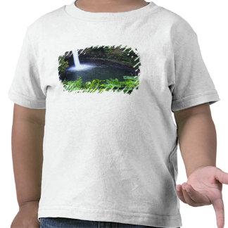 Hawaii, Big Island, Hilo, Rainbow Falls, Lush Tshirts