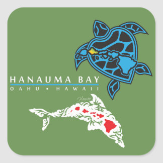 Hawaii Dolphins Turtle Square Sticker