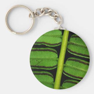 Hawaii Fern Basic Round Button Keychain
