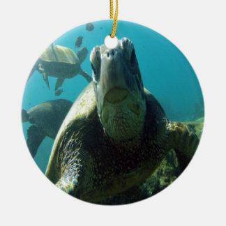 Hawaii Green Sea Turtle Ceramic Ornament