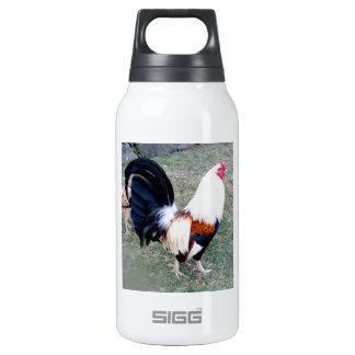 Hawaii Hanauma Bay Rooster Insulated Water Bottle