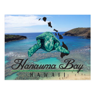 Hawaii Hanauma Bay Turtle - Honu Postcard