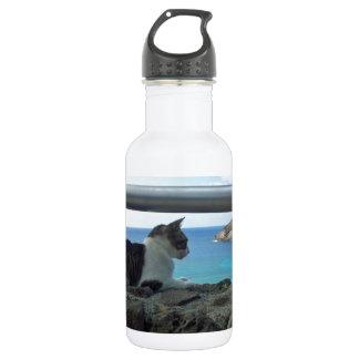 Hawaii Hanaumna Bay Cat 532 Ml Water Bottle
