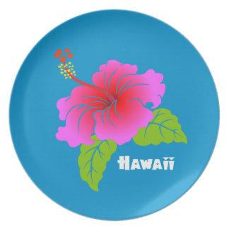 Hawaii Hibiscus Party Plates
