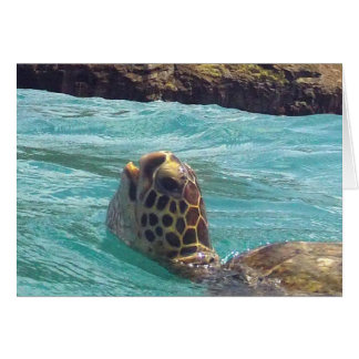 Hawaii Honu Turtle Card