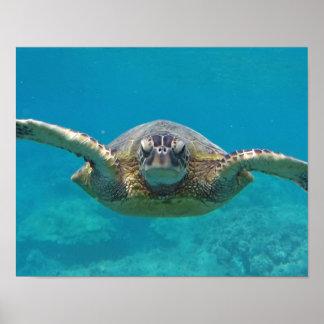 Hawaii Islands Sea Turtle Print