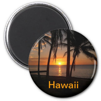 Hawaii magnet
