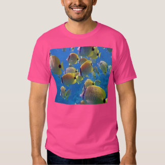 Hawaii Millet Seed Butterfly Fish Tee Shirt