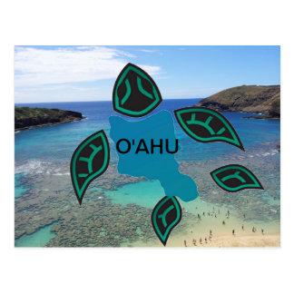 Hawaii Oahu Island Turtle Postcard