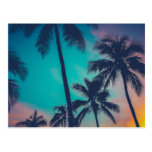Hawaii Palm Trees At Sunset Postcard