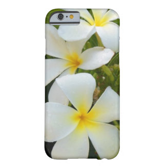 Hawaii Plumeria Barely There iPhone 6 Case