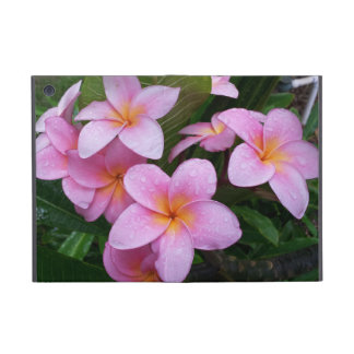 Hawaii Plumeria Flowers Case iPad Mini Case