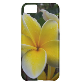 Hawaii Plumeria Flowers Cover For iPhone 5C