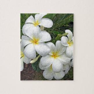 Hawaii Plumeria Flowers Jigsaw Puzzle