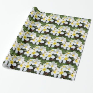 Hawaii Plumeria Flowers Wrapping Paper